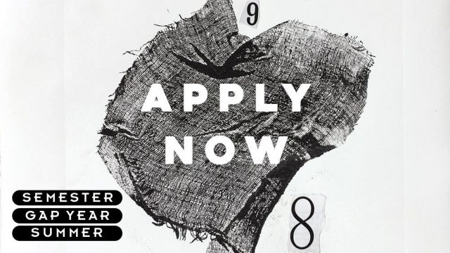 Apply Now19 banner